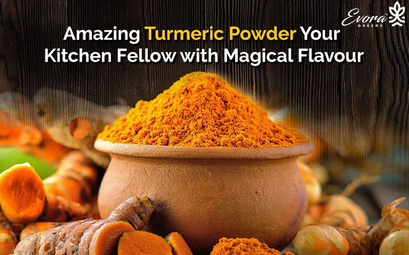 Amazing Turmeric Powder Your Kitchen Fellow with Magical Flavour | Evoragreens