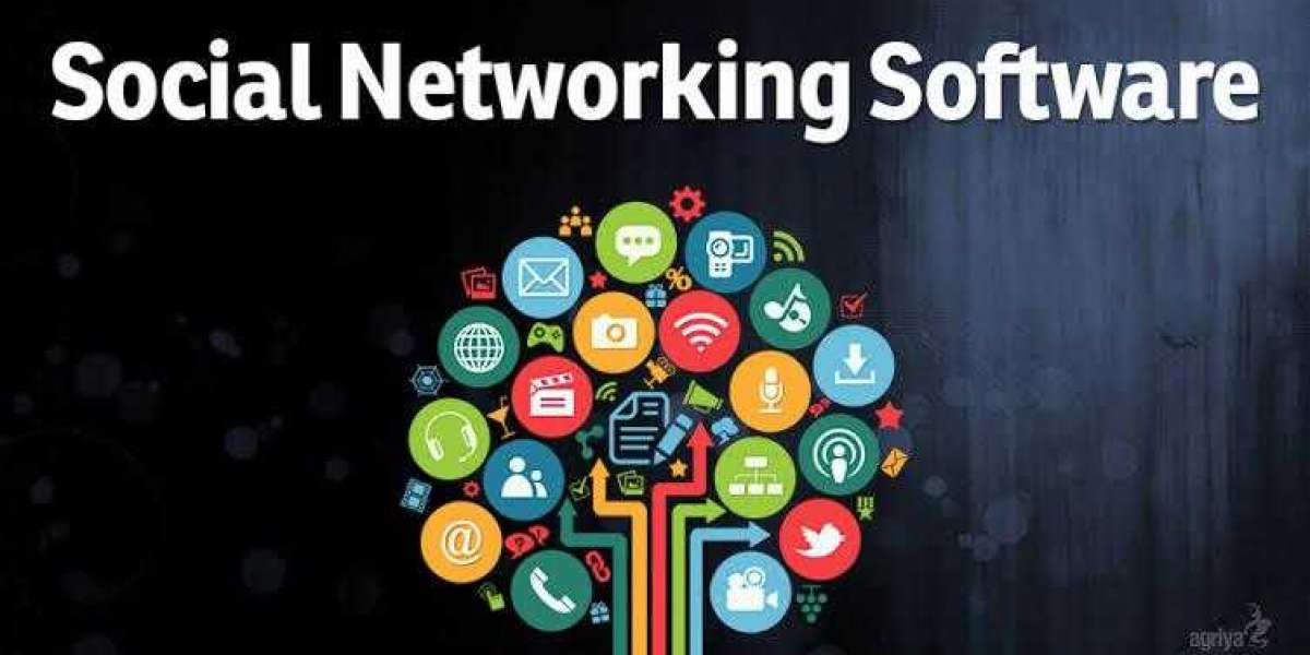 Social Networking Software Market Giants Spending Is Going To Boom IBM, Microsoft,Dfinity
