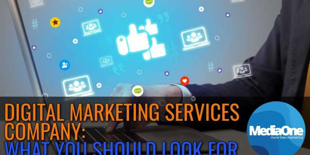 What to Expect from a Digital Marketing Agency