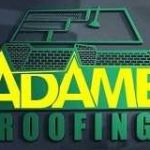 Adame Roofing Profile Picture