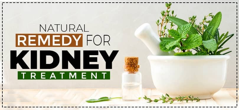 Natural remedy for Kidney Treatment
