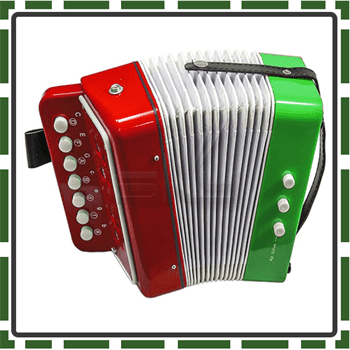 12 Best Accordions for Kids to have fun with playing ease
