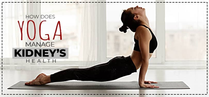 How does Yoga Manage Kidneys' Health