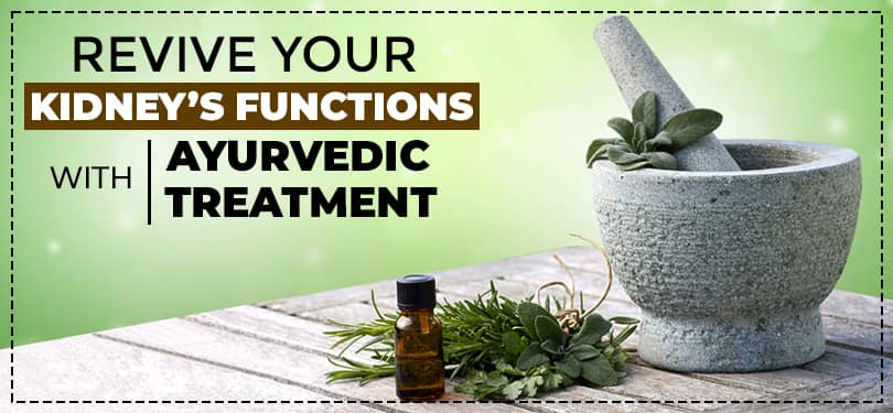 Revive your kidneys' functions with Ayurvedic treatment